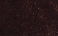 Black Plum: YP036-26
