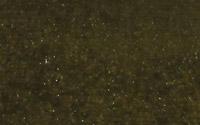 Vert: YP036-6